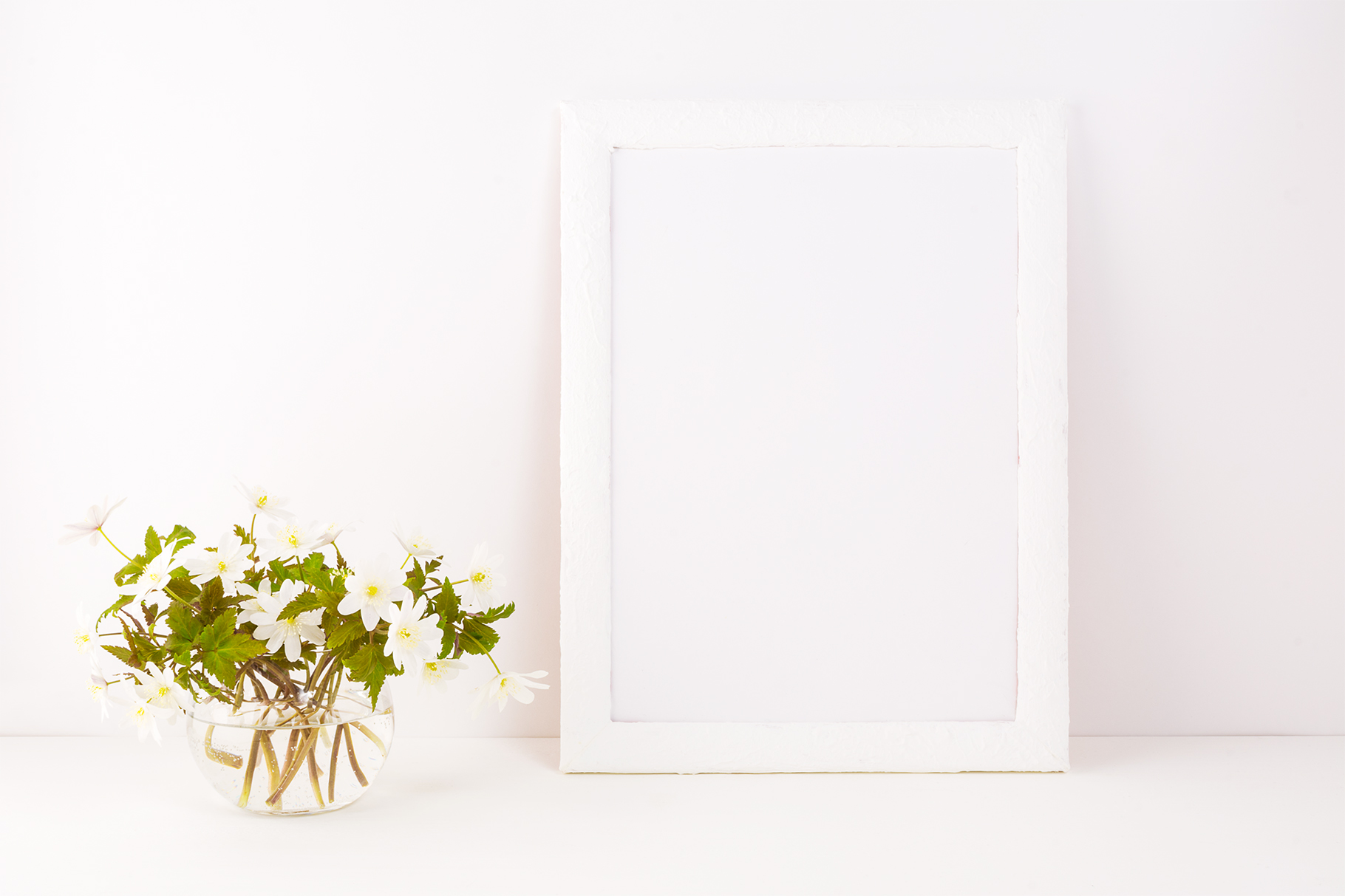 Download Free White Frame Mockup With Rue Anemone Flowers Graphic By Tasipas for Cricut Explore, Silhouette and other cutting machines.