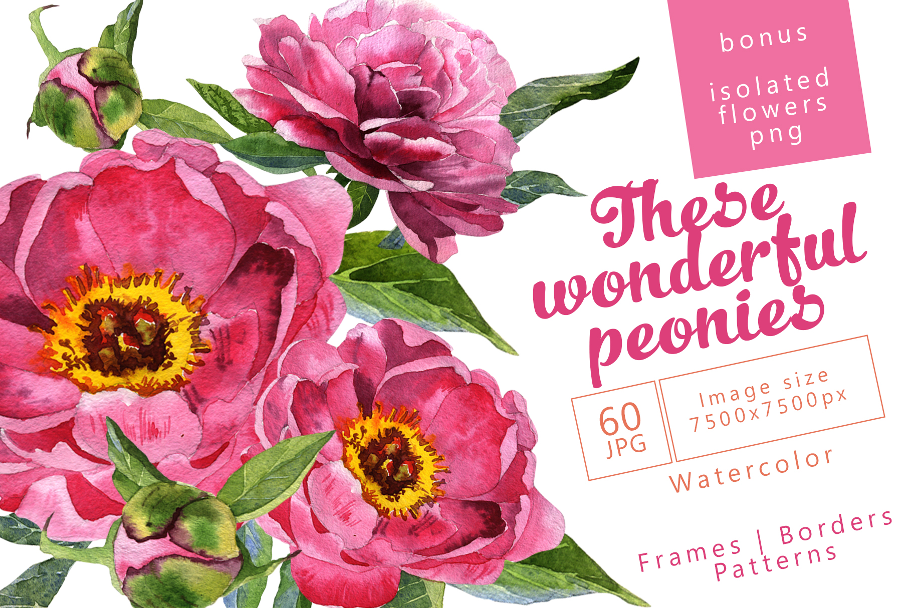 Download Free Wonderful Peonies Watercolor Set Graphic By Mystocks Creative for Cricut Explore, Silhouette and other cutting machines.