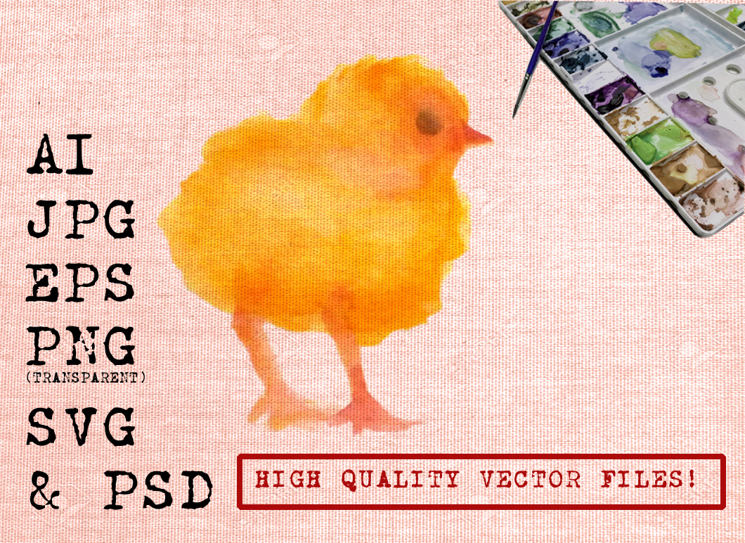 Yellow Chick Watercolor Graphic Illustrations By Ambar Art