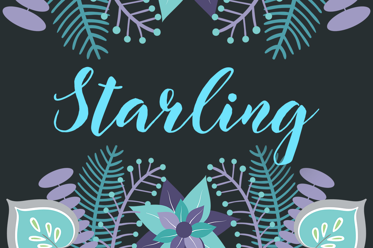 Starling Font By No Gravity Type