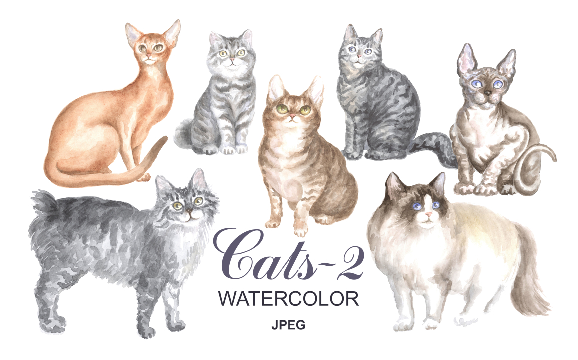 Cats Watercolor Painting Graphic By Olga Belova