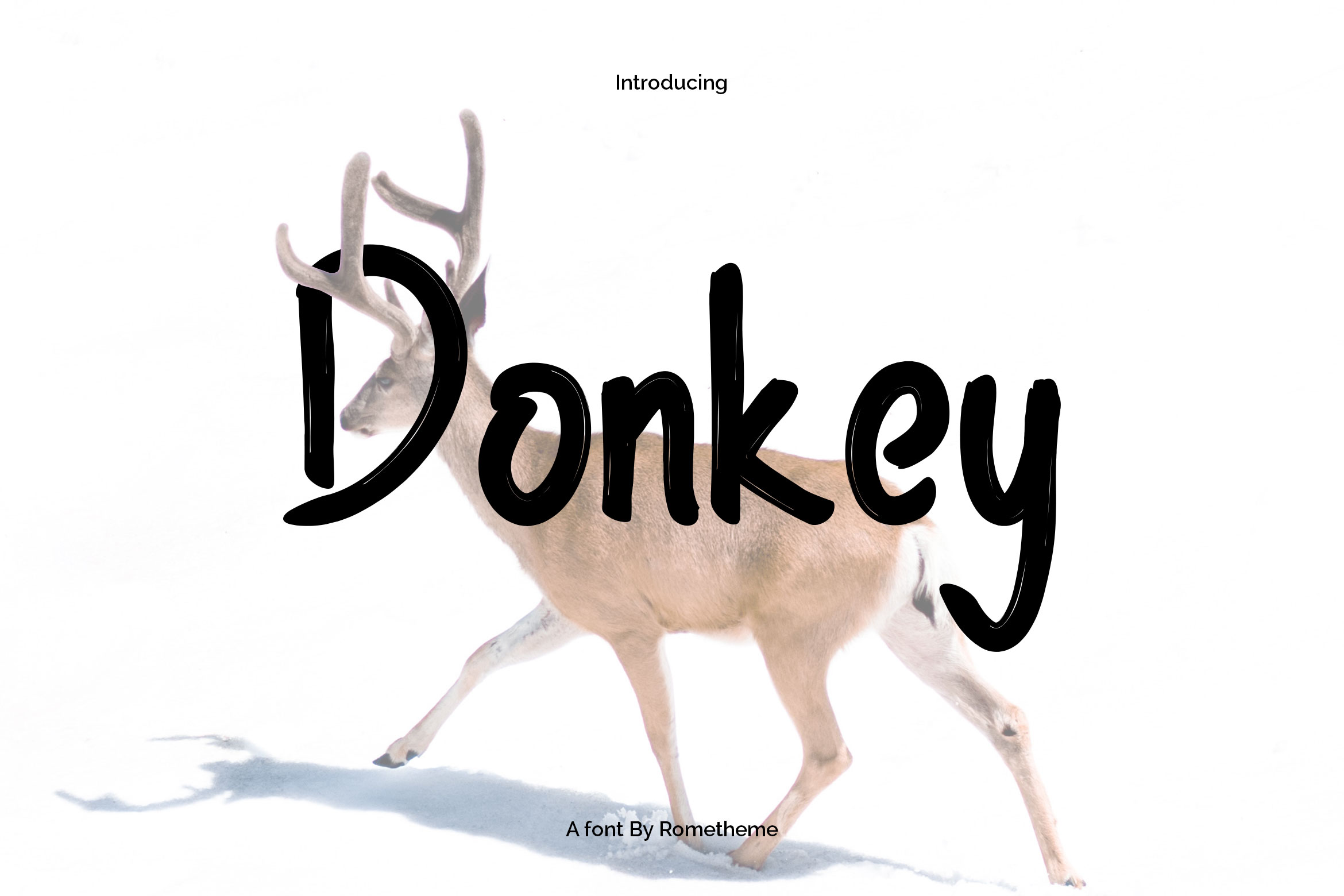 Print on Demand: Donkey Sans Serif Font By rometheme