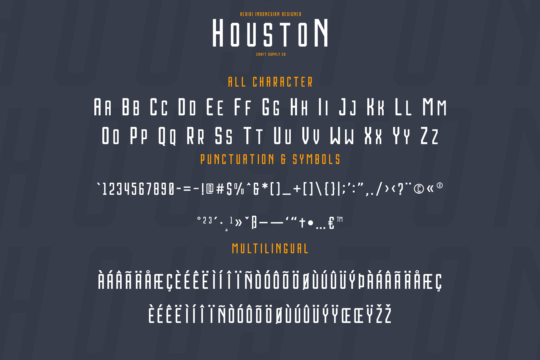 Print on Demand: Houston Sans Serif Font By craftsupplyco - Image 4