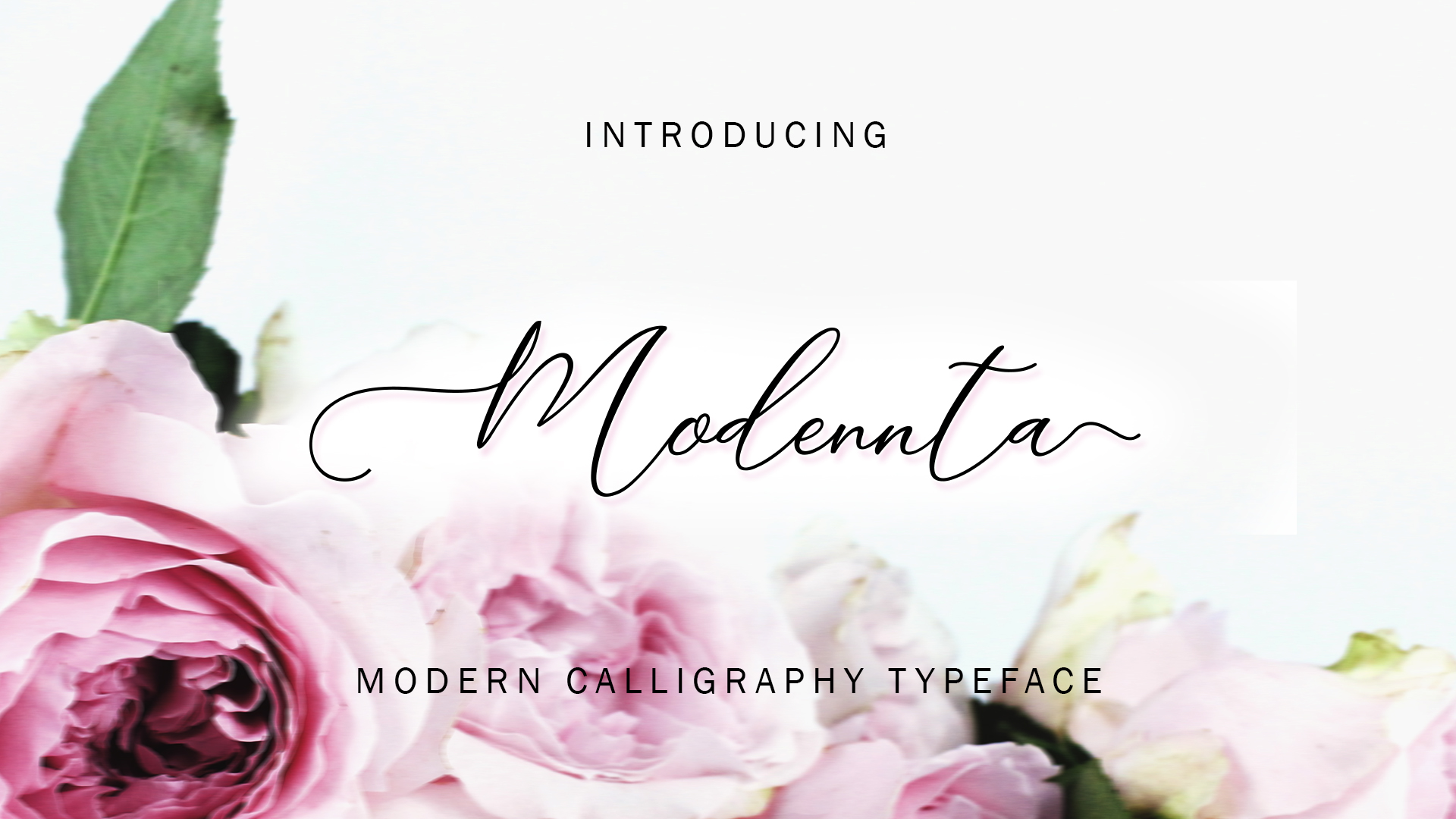 Download Free Modennta Script Font By Modennta Creative Fabrica SVG Cut Files