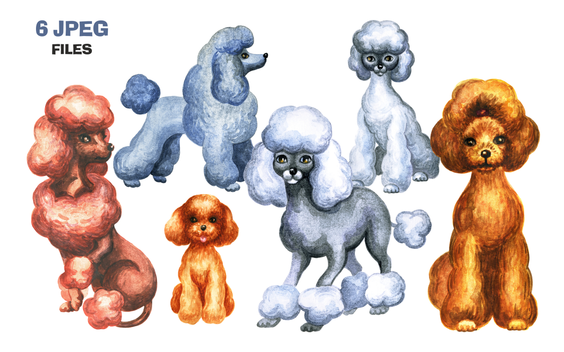 Poodles Watercolor Set Graphic By Olga Belova