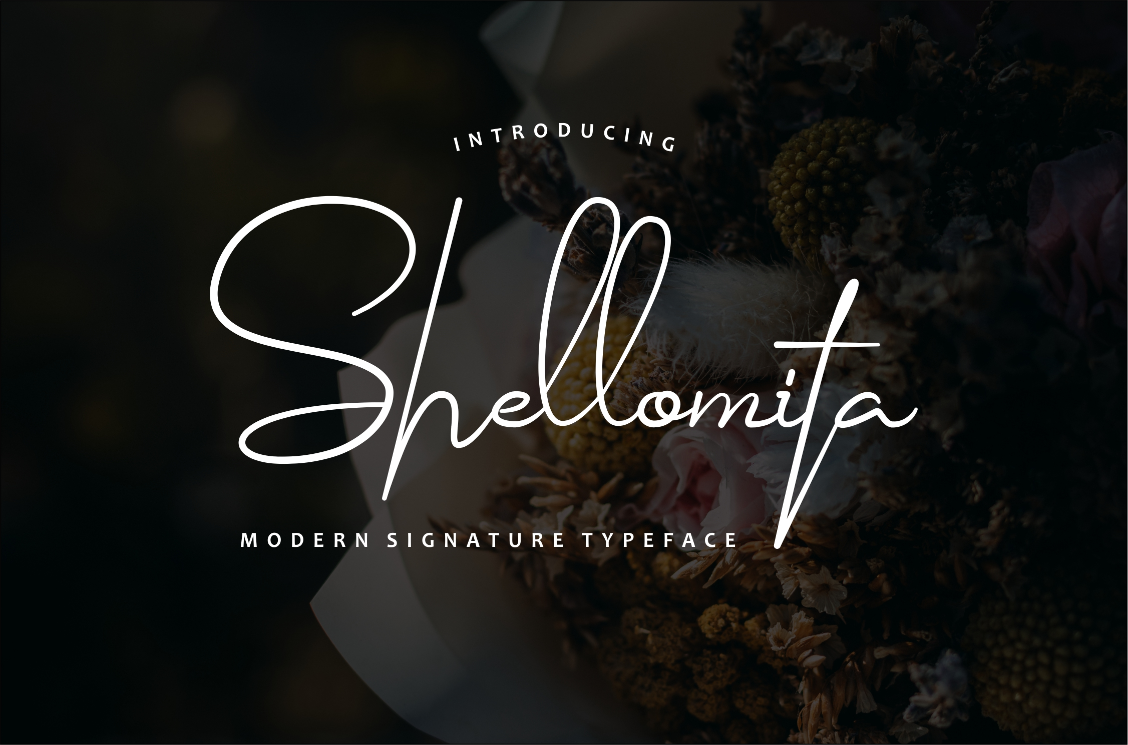Print on Demand: Shellomita Script & Handwritten Font By Bluestudio
