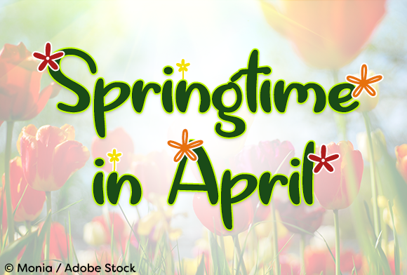 Springtime in April Font By Misti Image 1