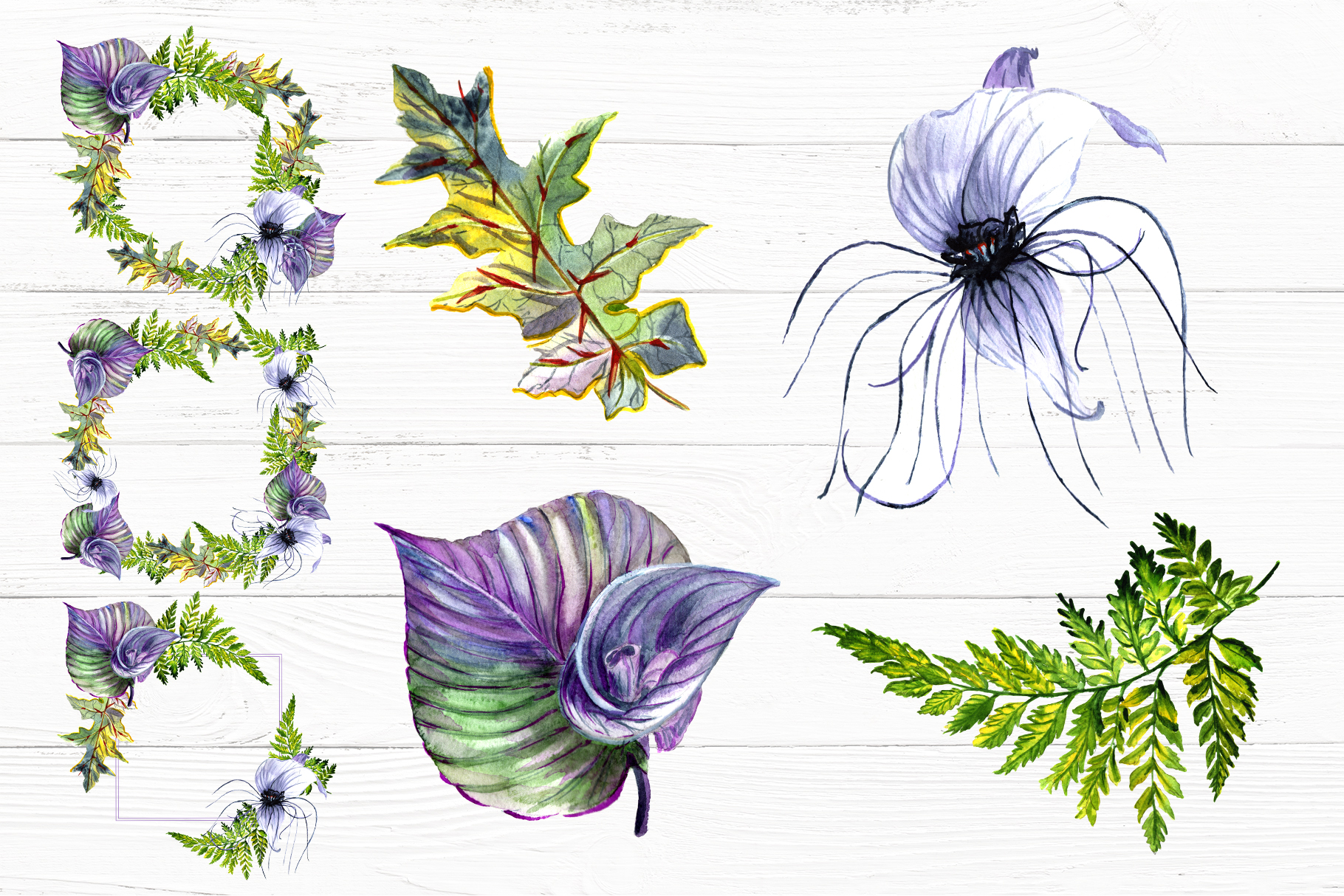 Print on Demand: Tropical Flowers PNG Watercolor Set Graphic Illustrations By MyStocks - Image 9