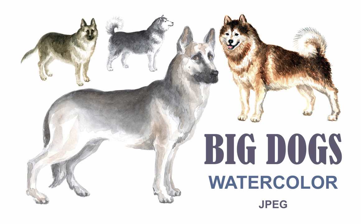 Print on Demand: Watercolor Dogs Graphic Illustrations By Olga Belova - Image 1