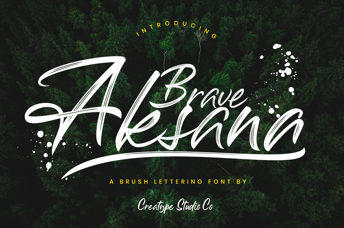 Print on Demand: Aksana Script & Handwritten Font By CreatypeStudio - Image 1