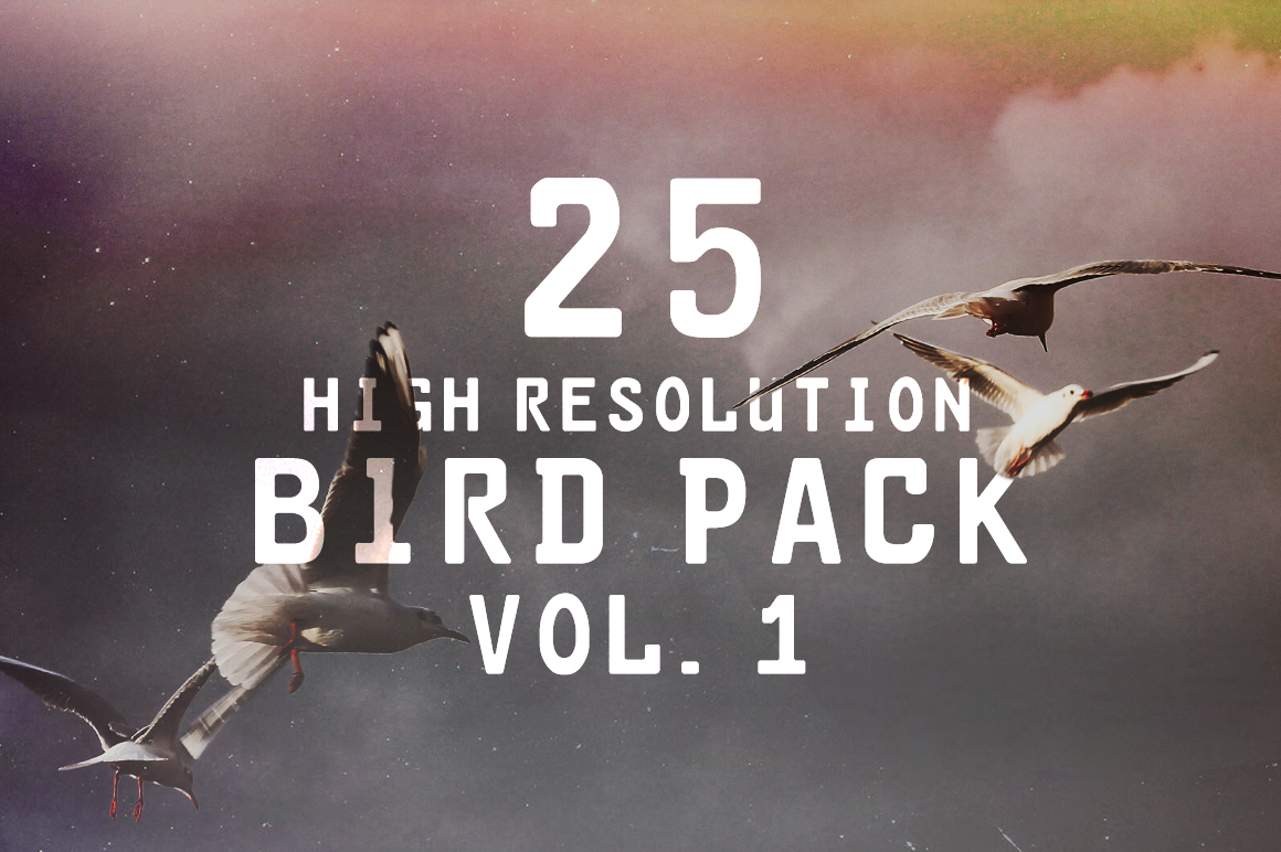 Bird Pack Vol. 1 Graphic Animals By Najla Qamber