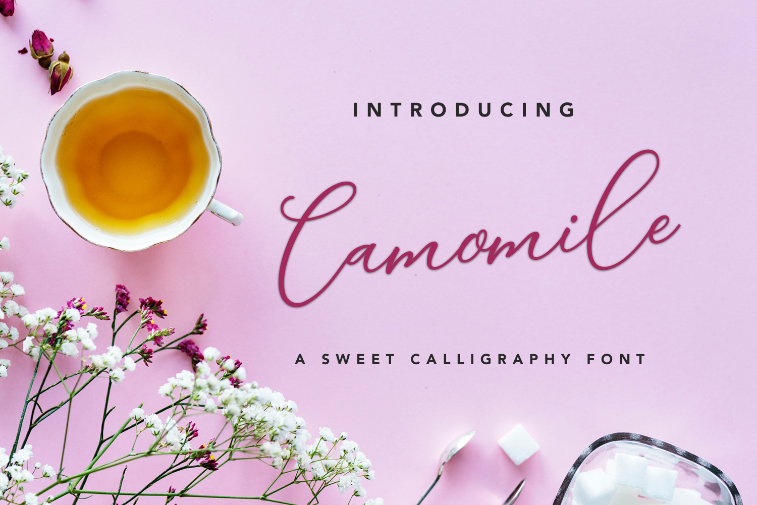 Print on Demand: Camomile Script Script & Handwritten Font By petertype