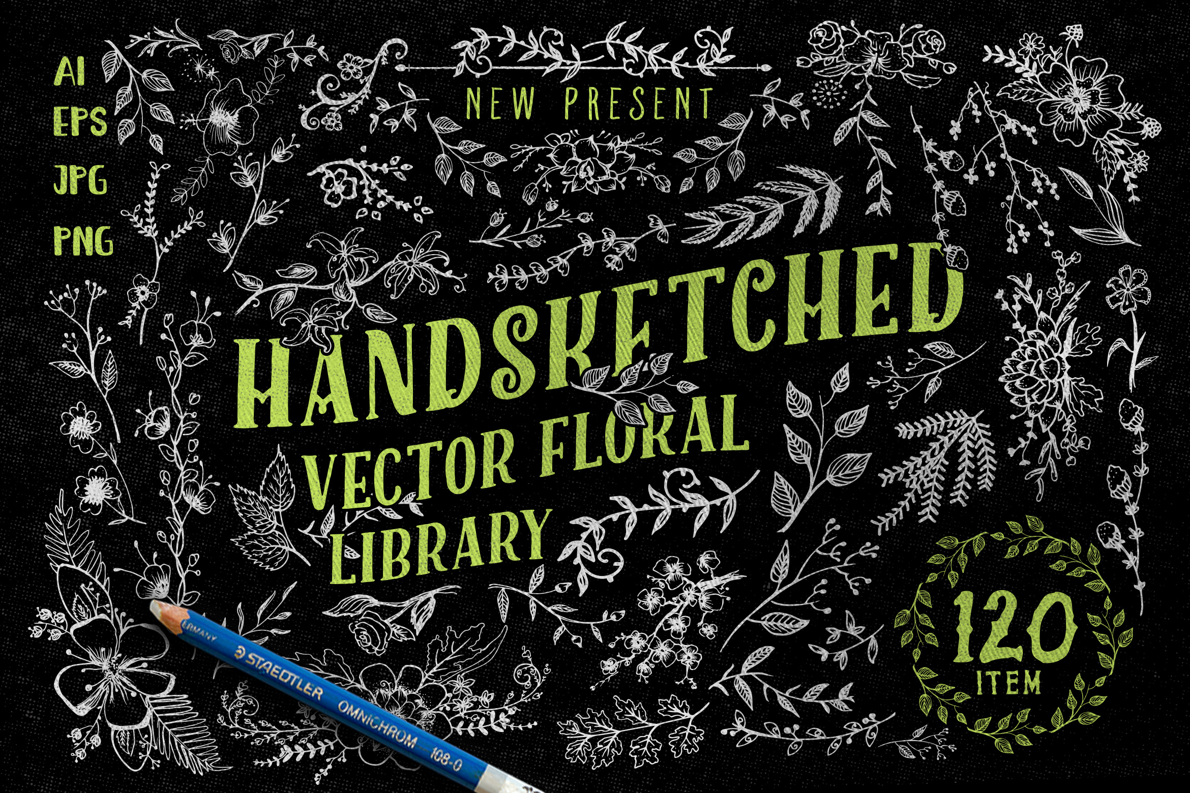 Handsketched Vector Floral Library Graphic Illustrations By storictype
