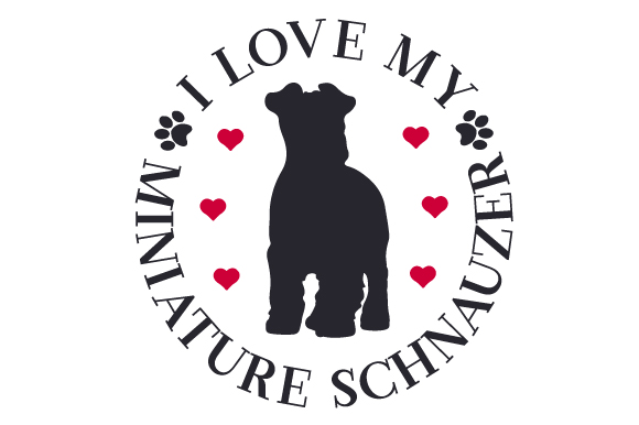 Download Free I Love My Miniature Schnauzer Svg Cut File By Creative Fabrica for Cricut Explore, Silhouette and other cutting machines.
