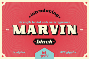 Print on Demand: Marvin Black Slab Serif Font By NREY
