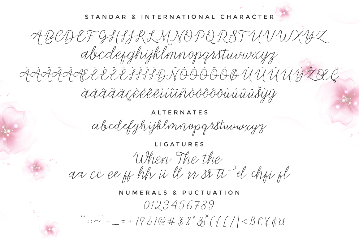 Print on Demand: Michella Script & Handwritten Font By Cooldesignlab - Image 6