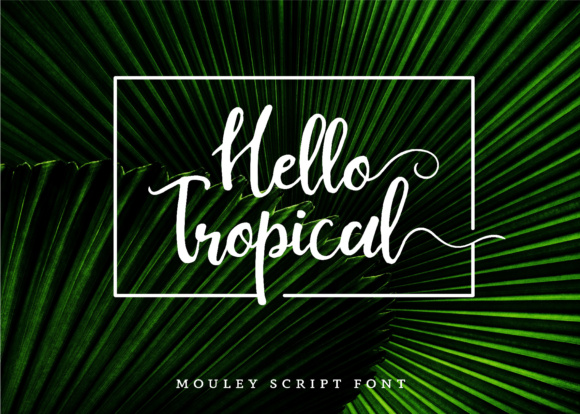 Print on Demand: Mouley Script & Handwritten Font By NendesKombet - Image 3