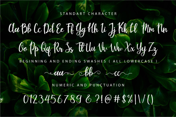Print on Demand: Mouley Script & Handwritten Font By NendesKombet - Image 6