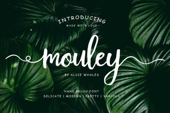 Print on Demand: Mouley Script & Handwritten Font By NendesKombet