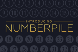 Numberpile Font By Typodermic