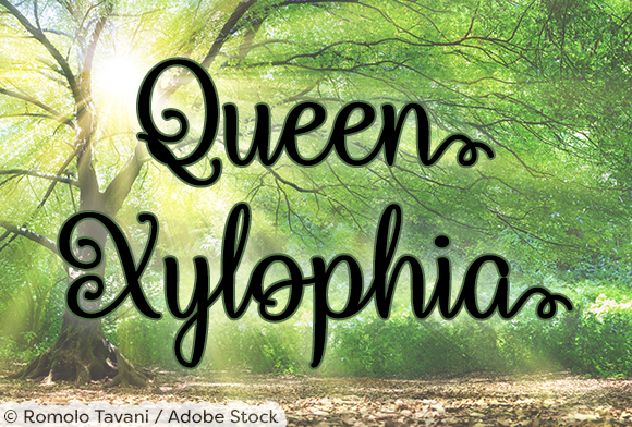 Print on Demand: Queen Xylophia Script & Handwritten Font By Misti