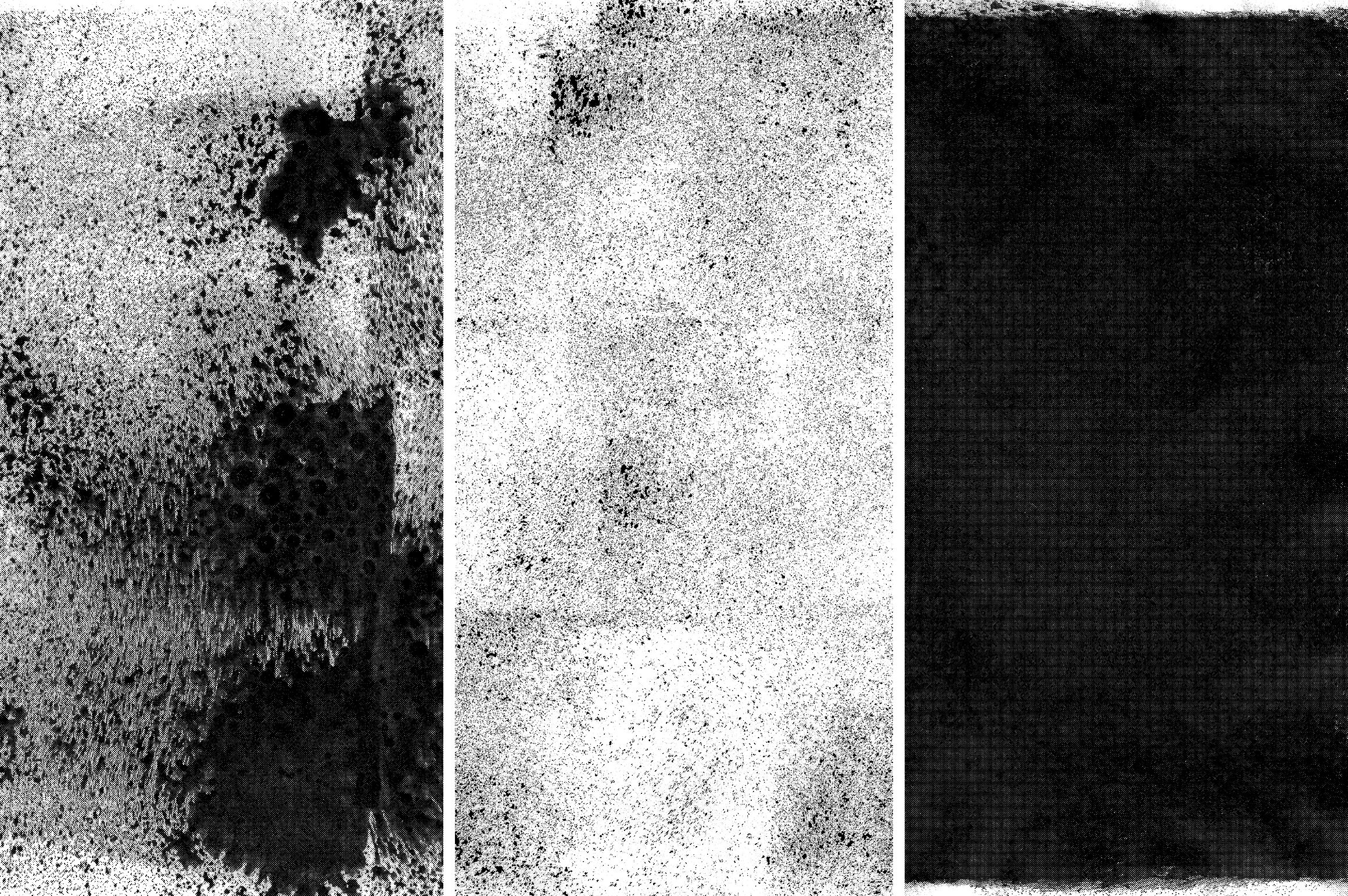 Rolled Ink Textures Volume 02 Graphic Textures By theshopdesignstudio - Image 14