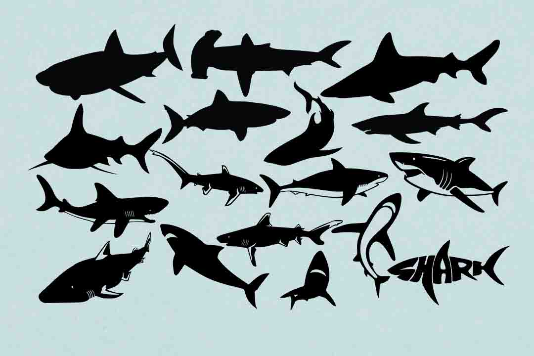 Print on Demand: Shark Silhouettes Graphic Illustrations By retrowalldecor