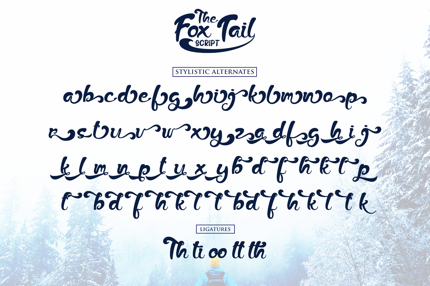 Print on Demand: The Fox Tail Script & Handwritten Font By Din Studio - Image 7