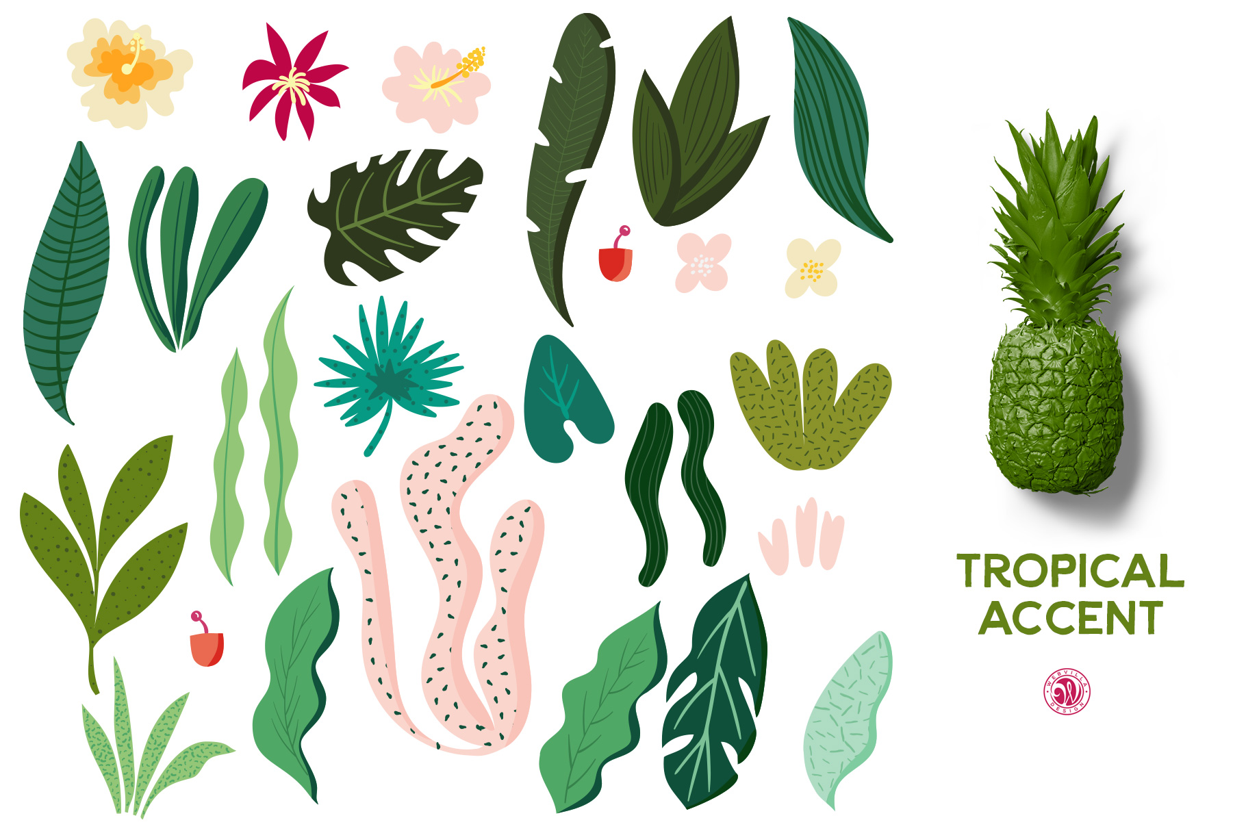 Tropical Accent Graphic Illustrations By webvilla - Image 2