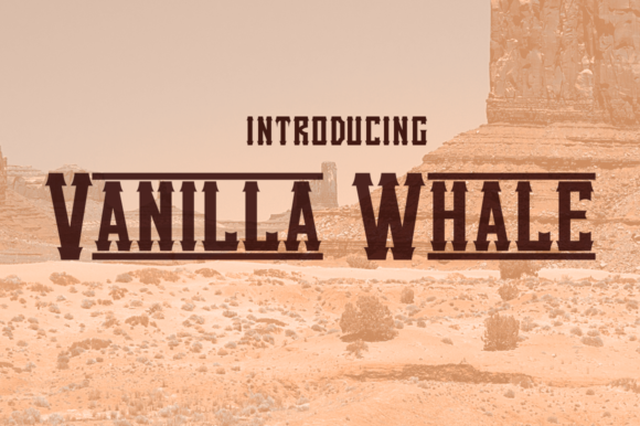 Print on Demand: Vanilla Whale Display Font By Typodermic