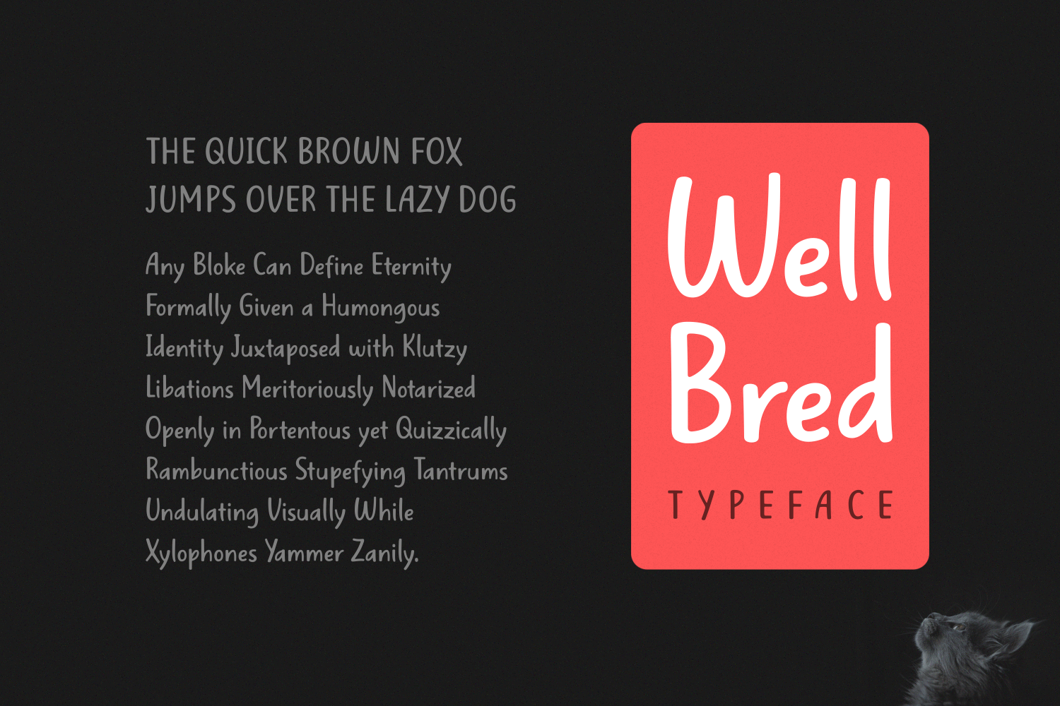 Well Bred Script & Handwritten Font By Situjuh