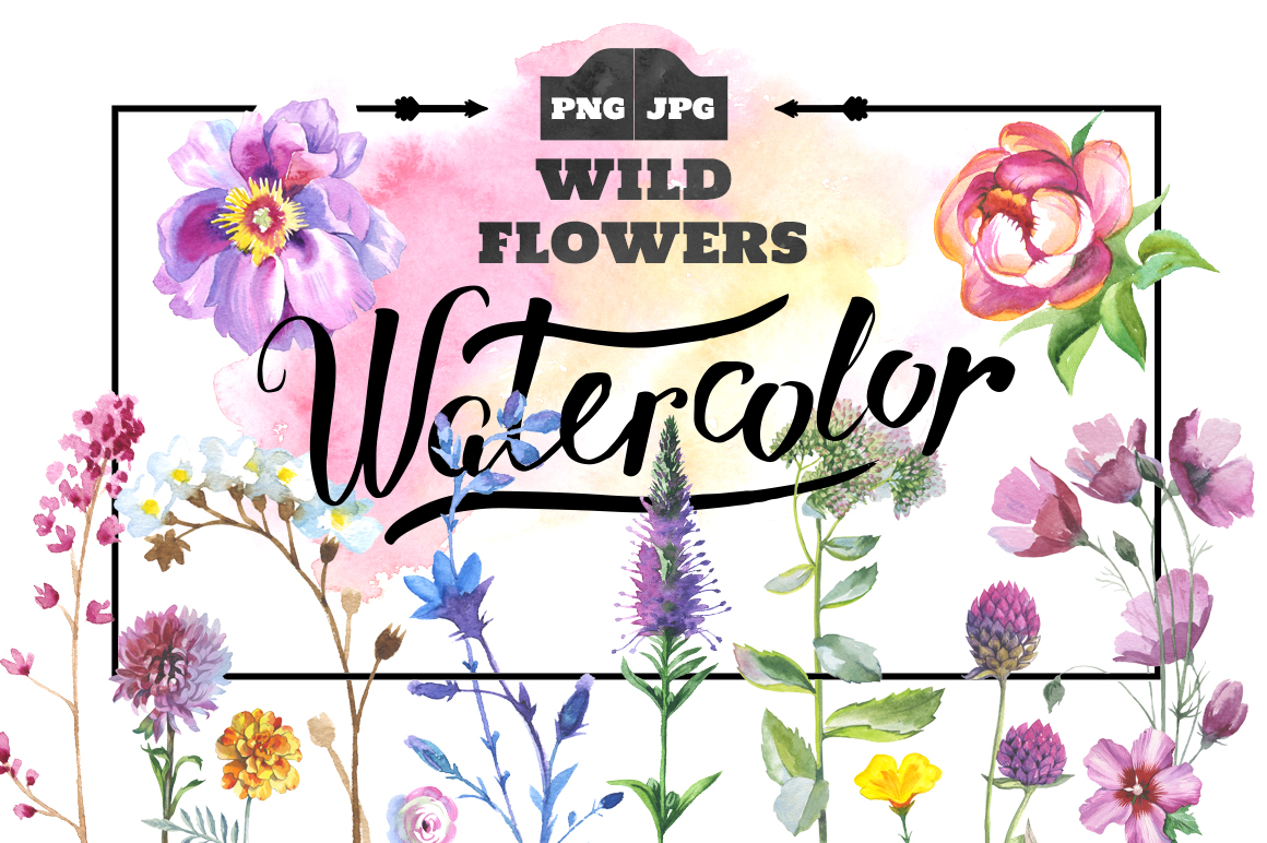 Print on Demand: Wild Flowers Watercolor PNG Clipart Graphic Illustrations By MyStocks - Image 1