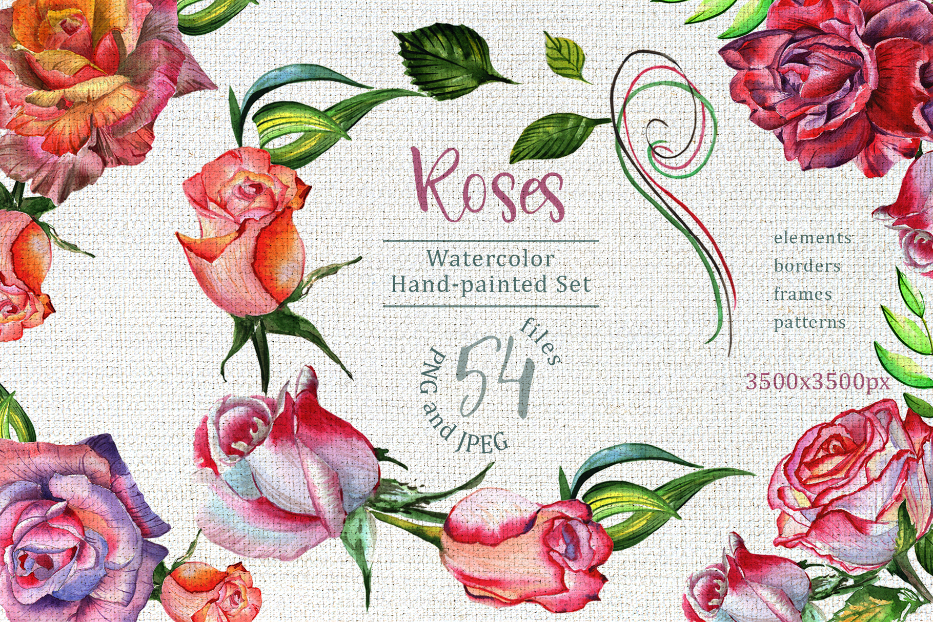 Print on Demand: Wonderful Roses Watercolor Flower Set Graphic Illustrations By MyStocks