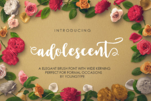 Print on Demand: Adolescent Script & Handwritten Font By Youngtype