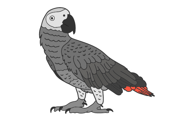 Download Free African Grey Parrot Archivos De Corte Svg Por Creative Fabrica Crafts Creative Fabrica for Cricut Explore, Silhouette and other cutting machines.