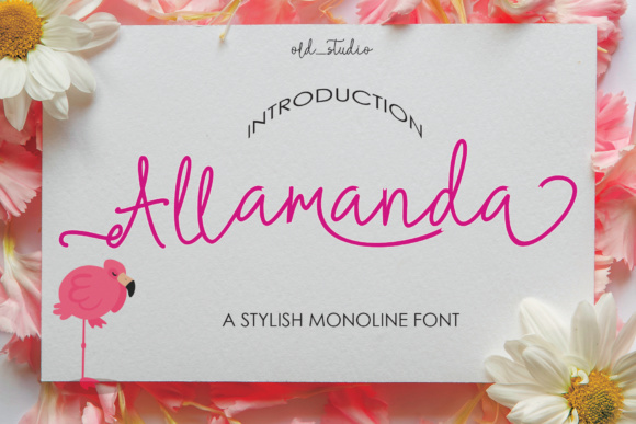 Print on Demand: Allamanda Script & Handwritten Font By Analogous