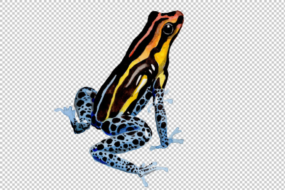 Print on Demand: Blue Frog Watercolor Set Graphic Illustrations By MyStocks