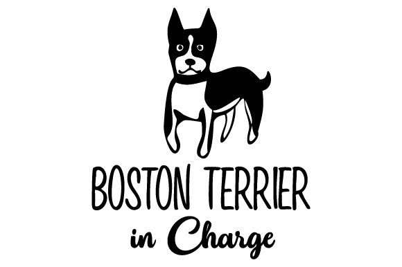 Boston Terrier in Charge Dogs Craft Cut File By Creative Fabrica Crafts