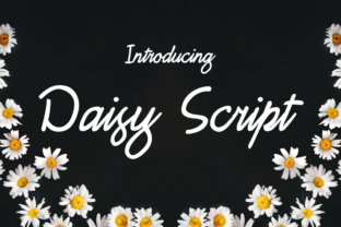 Daisy Script Font By Creative Fabrica Freebies