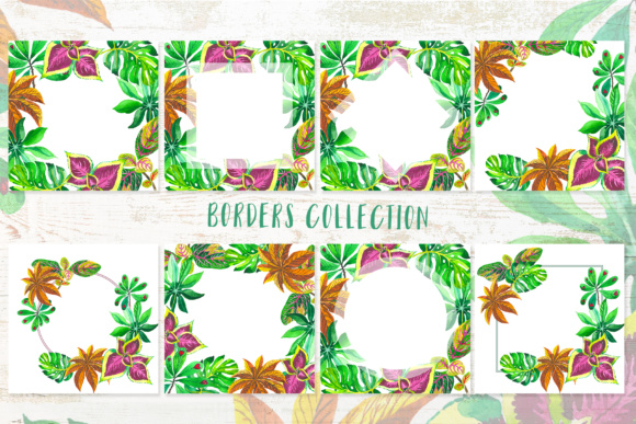 Exotic Tropical Set PNG Watercolor Graphic By MyStocks Image 9