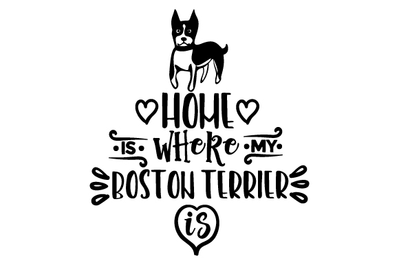 Download Free Home Is Where My Boston Terrier Is Svg Cut File By Creative for Cricut Explore, Silhouette and other cutting machines.