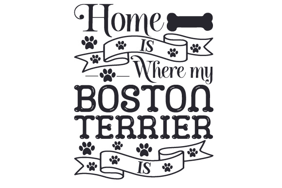 Home is Where My Boston Terrier is Dogs Craft Cut File By Creative Fabrica Crafts