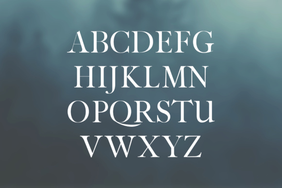Print on Demand: Jerin Serif Font By Creative Tacos - Image 2