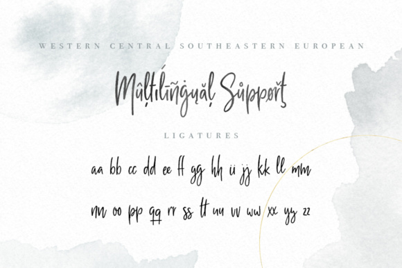 Milano Sky Script Font By By Lef Image 7