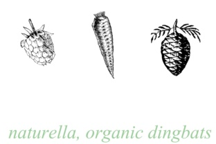 Print on Demand: Naturella Dingbats Fuente Por Intellecta Design