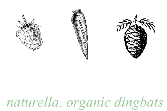 Print on Demand: Naturella Dingbats Font By Intellecta Design
