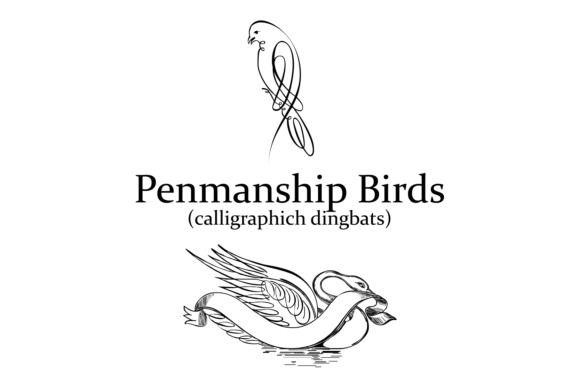 Print on Demand: Penmanship Birds Dingbats Font By Intellecta Design - Image 2