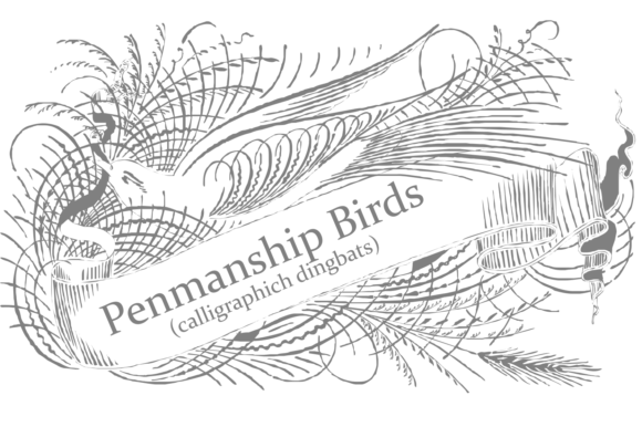 Print on Demand: Penmanship Birds Dingbats Font By Intellecta Design - Image 3
