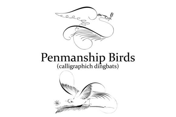 Print on Demand: Penmanship Birds Dingbats Font By Intellecta Design - Image 4