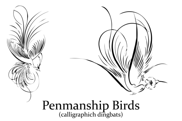 Print on Demand: Penmanship Birds Dingbats Font By Intellecta Design - Image 5